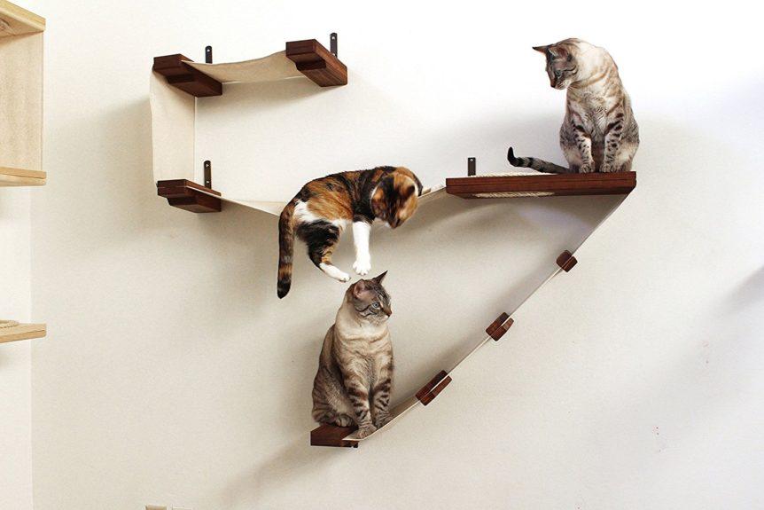 Cat Wall Climbers