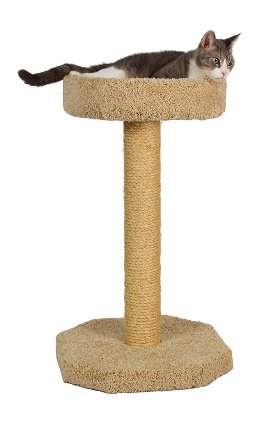 Molly and Friends Feline Recliner sisal covered scratcher with bed
