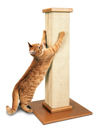 CP Amazon SmartCat Pioneer Pet Ultimate Scratching Post Beige feature