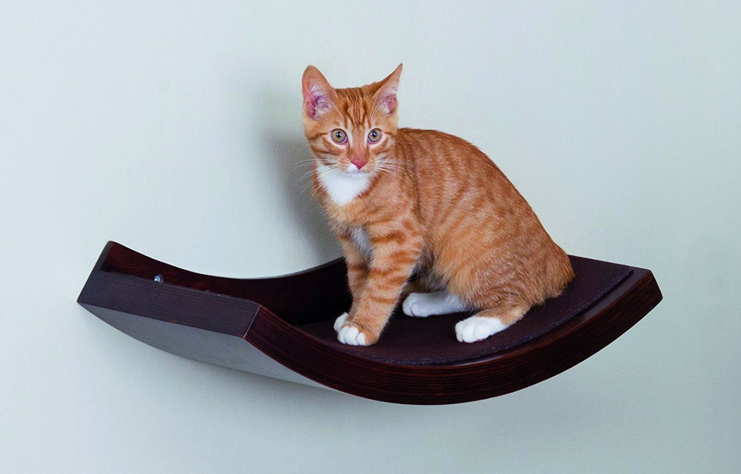 Trixie Pet Products Wall Mounted Cat Shelf