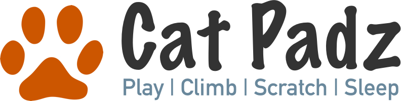Play | Climb | Scratch | Sleep