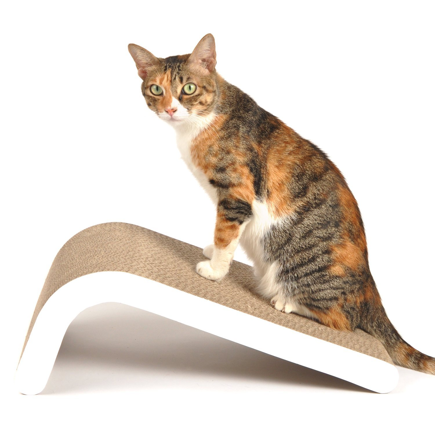 4CLAWS Incline Scratching Post
