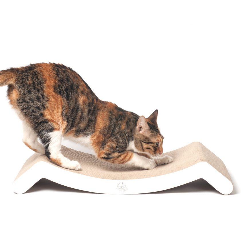 Cat Nip Trick