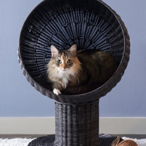 The Refined Feline Kitty Ball Rattan Cat Bed
